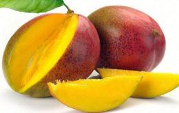 Manfaat African Mango Bagi Tubuh Manusia