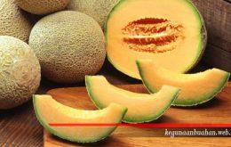 kegunaan buah blewah
