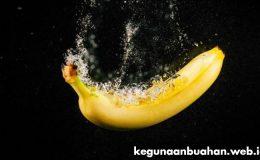 kegunaan pisang susu