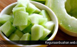 Khasiat Melon untuk Kesehatan Tubuh