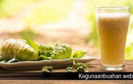 Beberapa Manfaat Buah Mengkudu Bagi Kesehatan