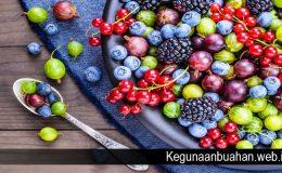 Manfaat Buah Berry bagi Kesehatan Yang Jarang Diketahui
