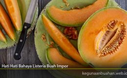 Hati Hati Bahaya Listeria Buah Impor
