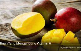 Buah Yang Mengandung Vitamin A