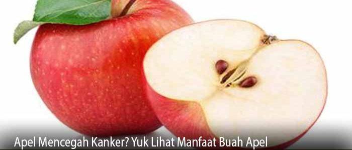 Apel Mencegah Kanker? Yuk Lihat Manfaat Buah Apel