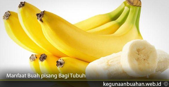 Manfaat-Buah-pisang-Bagi-Tubuh